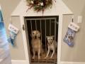 Pet-Gate